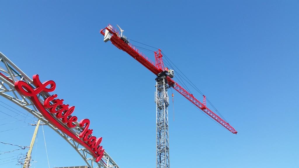 cranes by david seaborn